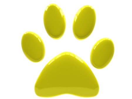 Yellow paw print isolated on white background.