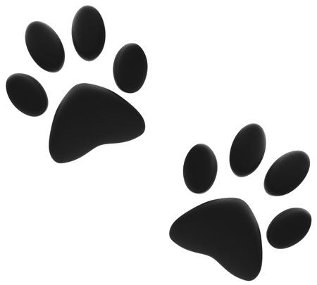silueta de gato: Impresiones de la pata