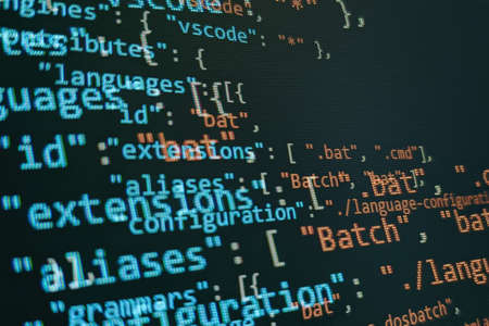Monitor closeup of function source code. Abstract IT technology background. Software source code. Banque d'images