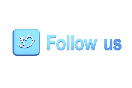 Blue  button with bird and Follow Us text on white, 3d render photo