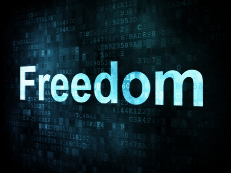 Life style concept: pixelated words Freedom on digital screen, 3d render Stock Photo - 14327651
