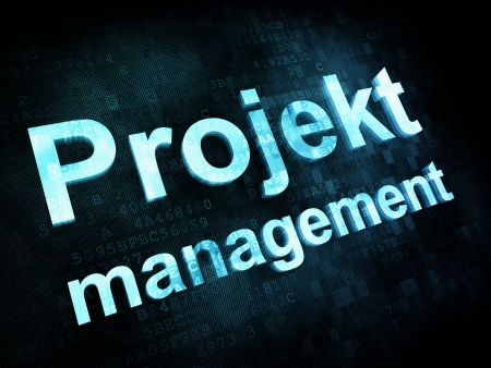 projekt: Management concept: pixelated words Projekt management on digital screen, 3d render Stock Photo