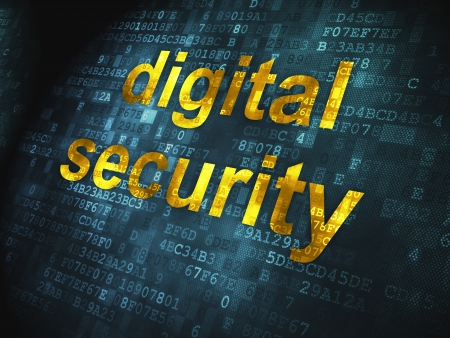 Security concept  pixelated words Digital Security on digital background, 3d render Stock Photo - 17678121