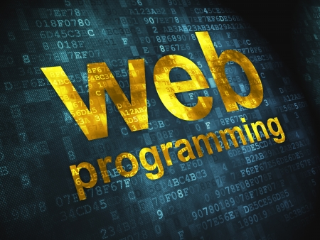 system development: SEO web development concept  pixelated words Web Programming on digital background, 3d render