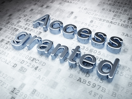 access granted: Privacy concept  Silver Access Granted on digital background, 3d render