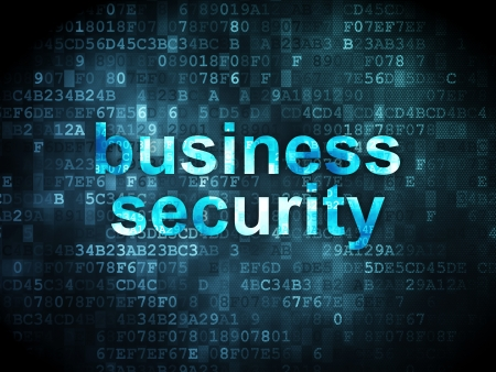 network security: Privacy concept: pixelated words Business Security on digital background, 3d render
