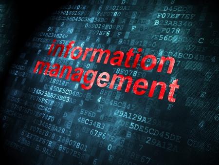 information processing system: Data concept: pixelated words Information Management on digital background, 3d render