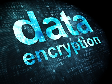 Privacy concept: pixelated words Data Encryption on digital background, 3d render Stock Photo - 21444878