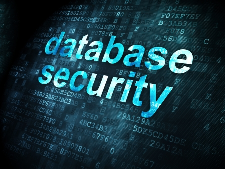 Security concept: pixelated words Database Security on digital background, 3d render Stock Photo - 21514693
