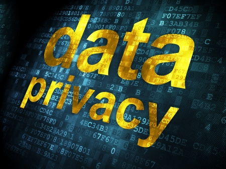 Safety concept: pixelated words Data Privacy on digital background, 3d render Stock Photo - 21514770