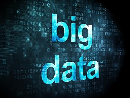 Informatie concept: pixelated woorden Big Data op digitale achtergrond, 3d render