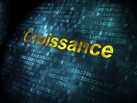 Business concept: pixelated words Croissance(french) on digital background, 3d render photo