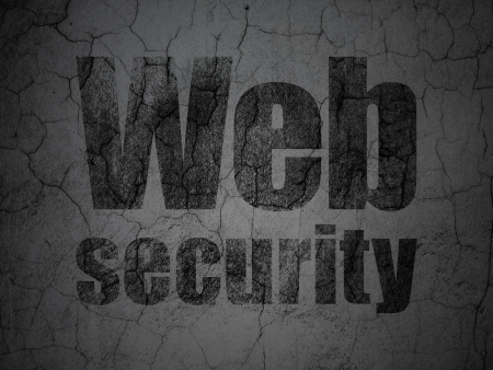Web development concept: Black Web Security on grunge textured concrete wall background, 3d render photo