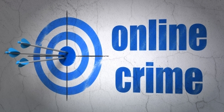 Success privacy concept: arrows hitting the center of target, Blue Online Crime on wall background, 3d render photo