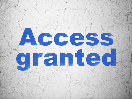 access granted: Privacy concept: Blue Access Granted on textured concrete wall , 3d render