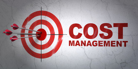 Success business concept: arrows hitting the center of target, Red Cost Management on wall background, 3d render photo