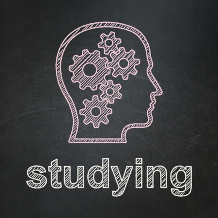 Education concept: Head With Gears icon and text Studying on Black chalkboard background, 3d render photo