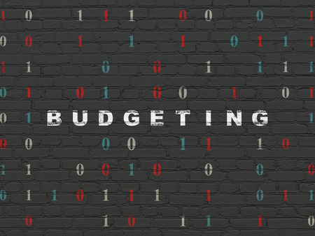 budgeting: Finance concept: Painted white text Budgeting on Black Brick wall background with Binary Code, 3d render