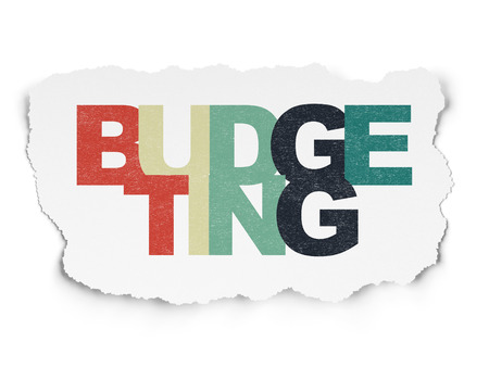 budgeting: Business concept: Painted multicolor text Budgeting on Torn Paper background, 3d render