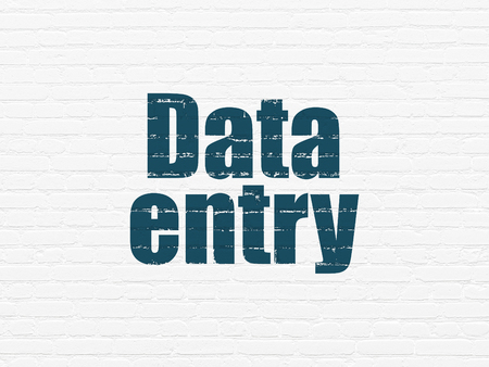 data entry: Data concept: Painted blue text Data Entry on White Brick wall background
