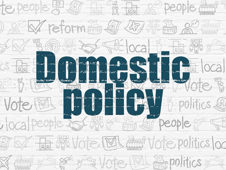 domestic policy: Political concept: Painted blue text Domestic Policy on White Brick wall background with  Hand Drawn Politics Icons