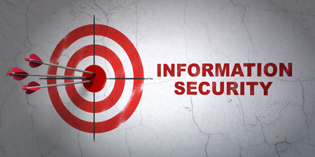 success security: Success security concept: arrows hitting the center of target, Red Information Security on wall background