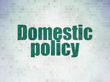 domestic policy: Political concept: Painted green word Domestic Policy on Digital Paper background