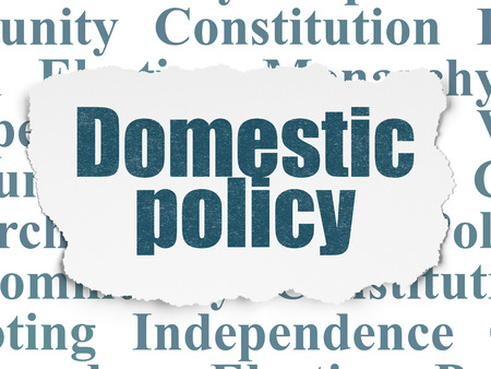 domestic policy: Politics concept: Painted blue text Domestic Policy on Torn Paper background with  Tag Cloud