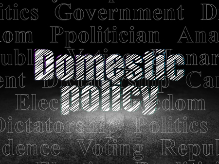 domestic policy: Politics concept: Glowing text Domestic Policy in grunge dark room with Dirty Floor, black background with  Tag Cloud Stock Photo