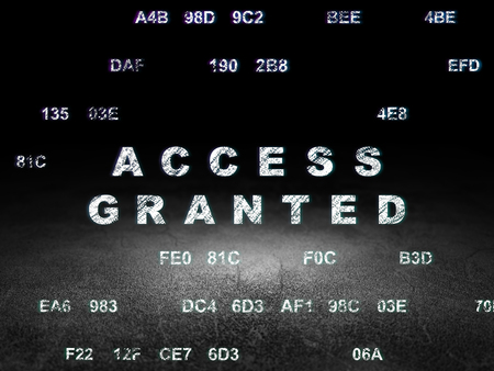 access granted: Protection concept: Glowing text Access Granted in grunge dark room with Dirty Floor, black background with Hexadecimal Code