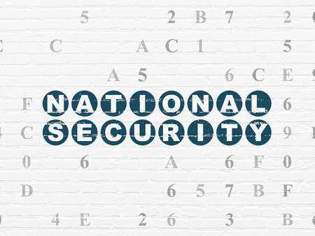 hexadecimal: Safety concept: Painted blue text National Security on White Brick wall background with Hexadecimal Code Stock Photo