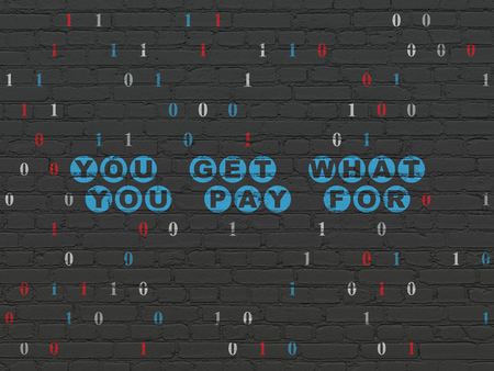 pay wall: Finance concept: Painted blue text You get what You pay for on Black Brick wall background with Binary Code