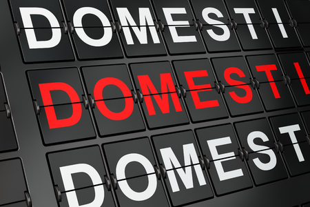 domestic policy: Political concept: Domestic Policy on airport board background, 3d render