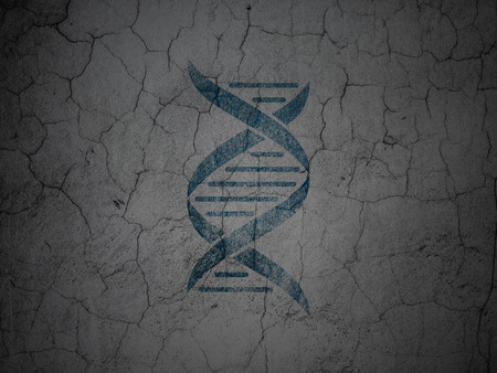 blue dna: Science concept: Blue DNA on grunge textured concrete wall background