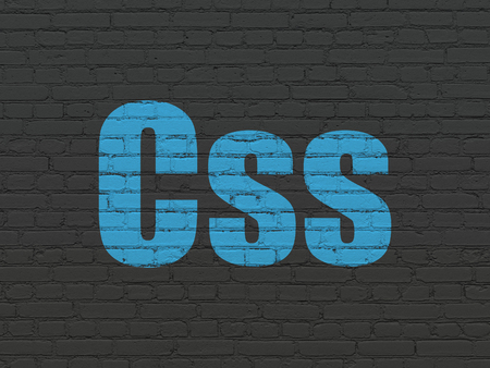 css: Software concept: Painted blue text Css on Black Brick wall background