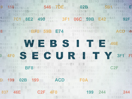 hexadecimal: Web development concept: Painted blue text Website Security on Digital Paper background with Hexadecimal Code Stock Photo