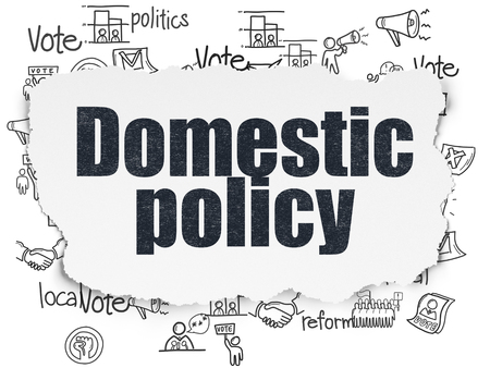 domestic policy: Politics concept: Painted black text Domestic Policy on Torn Paper background with  Hand Drawn Politics Icons 3D rendering