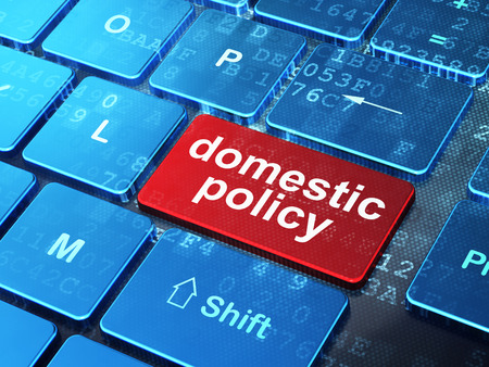 domestic policy: Political concept: computer keyboard with word Domestic Policy on enter button background, 3D rendering