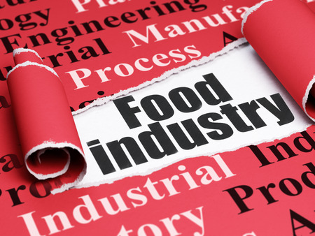 food industry: Industry concept: black text Food Industry under the curled piece of Red torn paper with  Tag Cloud, 3D rendering