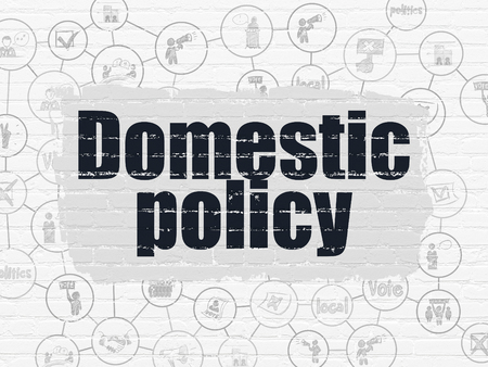 domestic policy: Political concept: Painted black text Domestic Policy on White Brick wall background with Scheme Of Hand Drawn Politics Icons