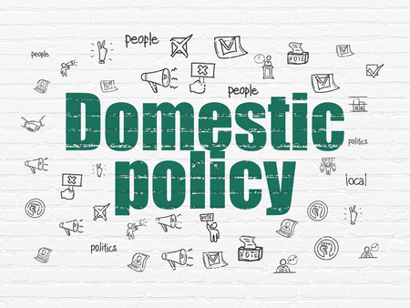 domestic policy: Politics concept: Painted green text Domestic Policy on White Brick wall background with  Hand Drawn Politics Icons