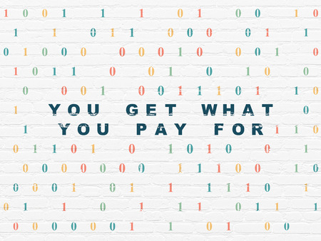 pay wall: Business concept: Painted blue text You get what You pay for on White Brick wall background with Binary Code