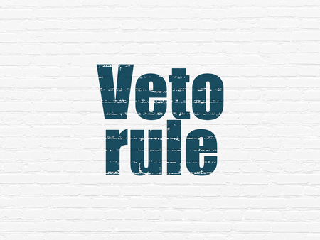 veto: Political concept: Painted blue text Veto Rule on White Brick wall background