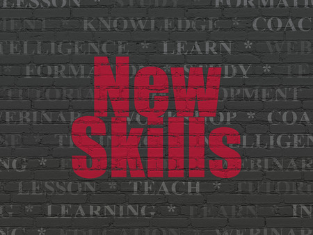 learning new skills: Learning concept: Painted red text New Skills on Black Brick wall background with  Tag Cloud