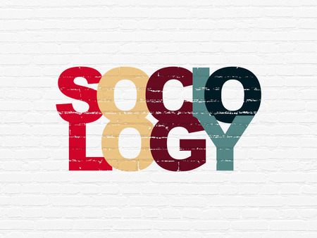 sociology: Learning concept: Painted multicolor text Sociology on White Brick wall background