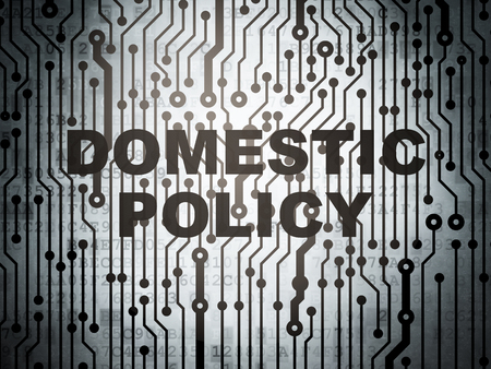 domestic policy: Politics concept: circuit board with  word Domestic Policy, 3D rendering