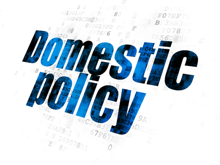 domestic policy: Political concept: Pixelated blue text Domestic Policy on Digital background
