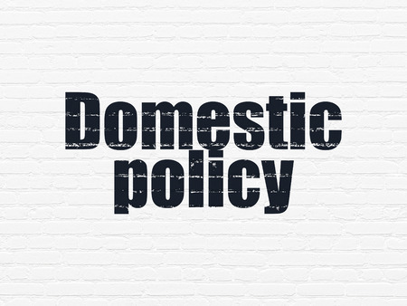 domestic policy: Political concept: Painted black text Domestic Policy on White Brick wall background