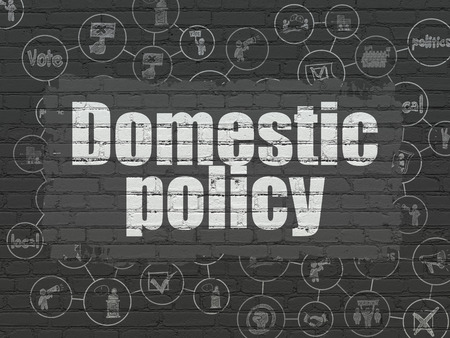 domestic policy: Politics concept: Painted white text Domestic Policy on Black Brick wall background with Scheme Of Hand Drawn Politics Icons