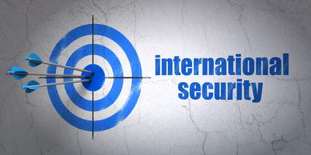 international security: Success protection concept: arrows hitting the center of target, Blue International Security on wall background, 3D rendering